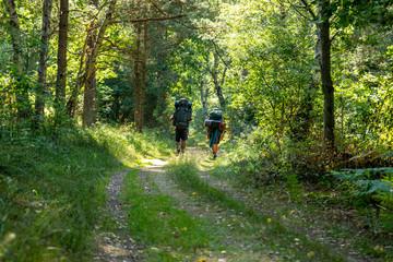 """Two youths hiking on a seldom used dirt road, following the orange markers of """"Skåneleden"""" in Österlen"""