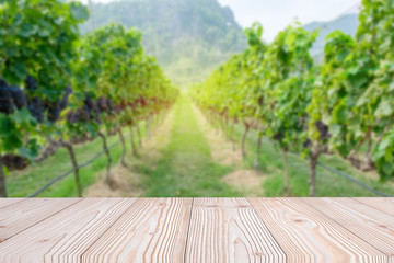 Empty wood table with freshly grapes, Vineyards in autumn harvest background, Mock up for your product display or montage