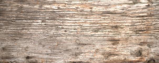 Gray vintage wood texture