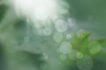 Green abstract colorful pattern with sun shine