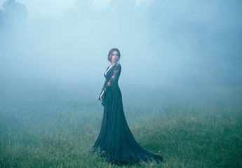 a girl in a black long dress walking along ia a clearing in thick fog. scared, beautiful, witch ia going to the forest, looking for a house. art photo. halloween costume. model. dark. mystic. evil.