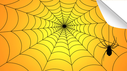 spider weaves a web of halloween