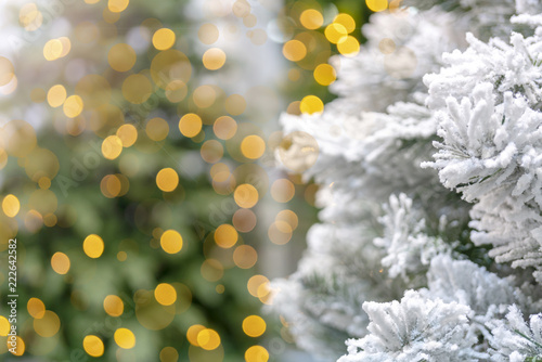 Christmas lights and snow biosynthesis flickr