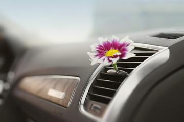 car air conditioner freshness