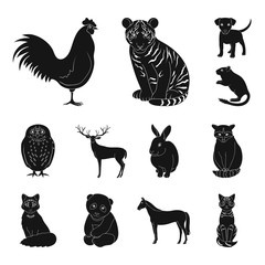Realistic animals black icons in set collection for design. Wild and domestic animals vector symbol stock web illustration.