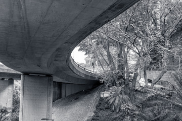 flyover concrete and nature in bw