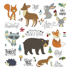 Set of handdrawn cute forest animals and lettering quotes. Vector illustrations with raccoon, squirrel, hare, mouse, bear, fox, deer, hedgehog and weasel.