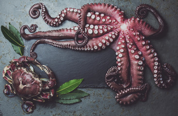 Raw fresh octopus on wooden table with laurel. Top view