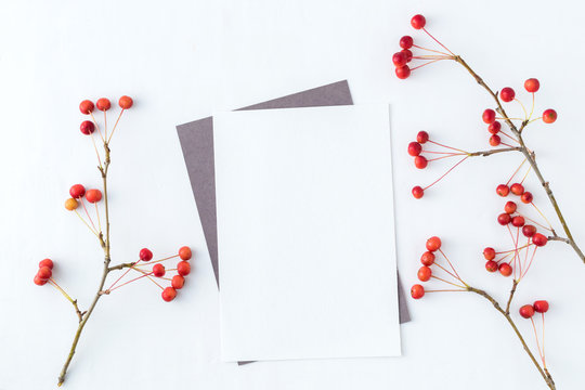 Mockup blank paper card and branch with small red apples