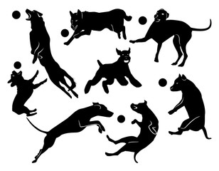 Set of cheerful jumping dogs