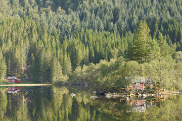 Norwegian Reflection