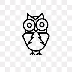 big eyes owl icon on transparent background. Modern icons vector illustration. Trendy big eyes owl icons