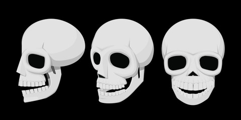 Isolate skull on transparent background