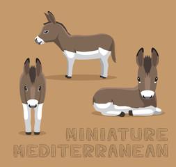 Donkey Miniature Mediterranean Cartoon Vector Illustration