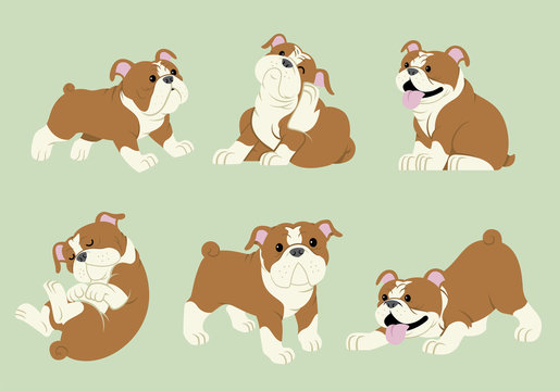 bulldog cartoon set