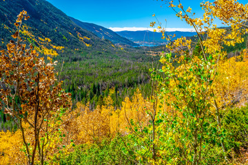 Beautiful Fall Hike in Aspens in Grand Lake, Colorado