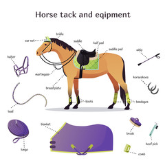 Vector collection with various elements of horse tack and equipment. Horse riding, training and equestrian sport gear. Saddle, bridle, blanket, halter, lunge, horseshoes isolated set