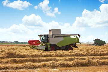 Combine Harvesting large wheat field