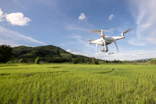 Drone surveying rice green farm agriculture technology concept