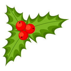 Colorful cartoon holly berries