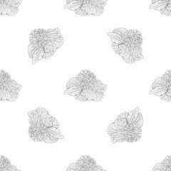 Seamless pattern. Plant in blossom, branch with flower ink sketch. Template for a business card, banner, poster, notebook, invitation, color book