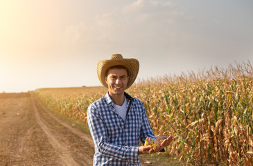 Farmer in ripe corn field
