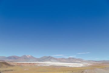 Paysage Lagune Chaxa atacama Chili désertique spectaculaire Altiplano Andes
