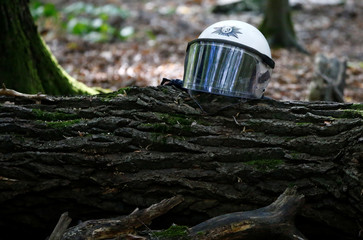 "Riot police helmet is seen on the felled tree, as police attempt to clear the area at the ""Hambacher Forst"" in Kerpen-Buir near Cologne"