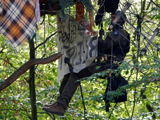 """A policeman removes a banner from a treehouse, during an attempt to clear the area at the """"Hambacher Forst"""" in Kerpen-Buir near Cologne"""