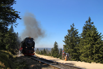 Mount Brocken, Harz Germany, Brocken Railway, hiker, dog