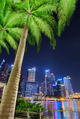 Singapore city skyline. Palm tree and business district view. Downtown reflected in water at dusk in Marina Bay. Travel cityscape