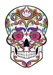 hand drawn sugar skull vector