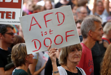 """A participant holds a placard reading """"AfD is stupid"""" during a protest march against right-wing extremism in Cologne"""