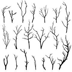 hand-drawn set of twigs