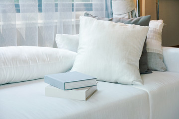 Books and pillows on white couch next to window in living room