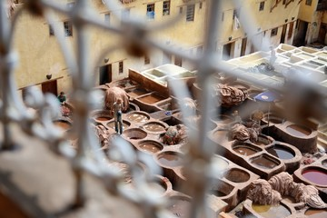 Working day at Chouara Tannery, seen through a fence, Fez, Morocco