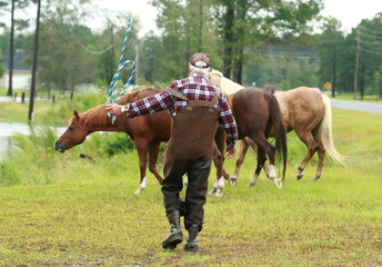 Man tries to corral escaped horses in the floodwater caused by Hurricane Florence in Lumberton