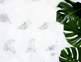Spa and massage treatments on white, marble background monstera leaves.