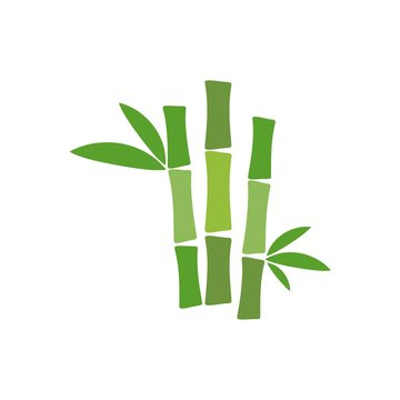 Tropical leaves bamboo tree icon