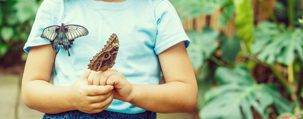 Close up of cute little girl holding butterfly on hand and looking at it