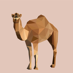 Colorful polygonal style design of wild camel in yellow colors