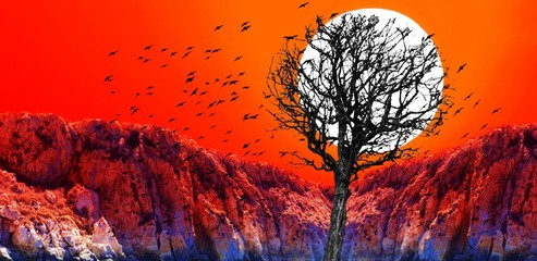 Sunset collage of red sunset with dry tree silhouette and black birds