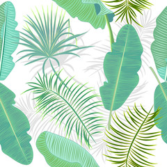 Seamless pattern of leaves banana. Tropical leaves of palm tree.