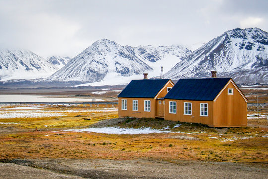 Yellow houses on yellow tundra grass with snowy mountains in the background, in Ny Alesund, Svalbard, Norwegian Arctic