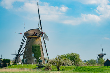 Afternoon view of the famous Kinderdijk winmill village