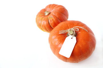 Autumn composition. Orange Hokkaido pumpkins with blank gift, price tags on white table background. Fall, Halloween and Thanksgiving design. Business concept. Styled stock