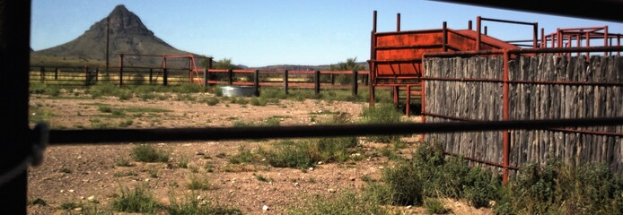 Cattle pen and chute with mountain peaks in background