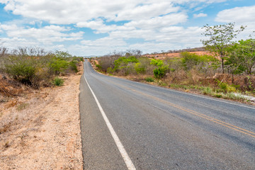 Cabaceiras, Paraíba, Brazil - February, 2018: Road to infinite with Cactus in a Caatinga Biome