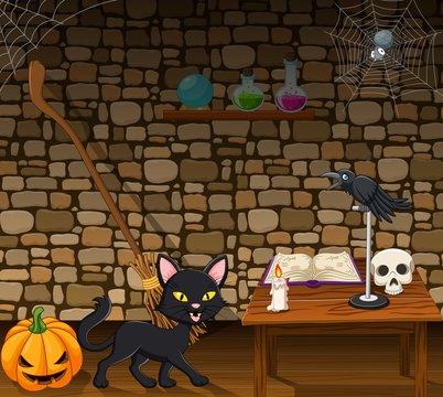 Cartoon black cat in the witch house