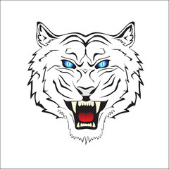 White Tiger Head design vector illustration. white tiger with blue eyes. for t-shirt design, tattoo